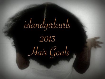2013 Hair Goals